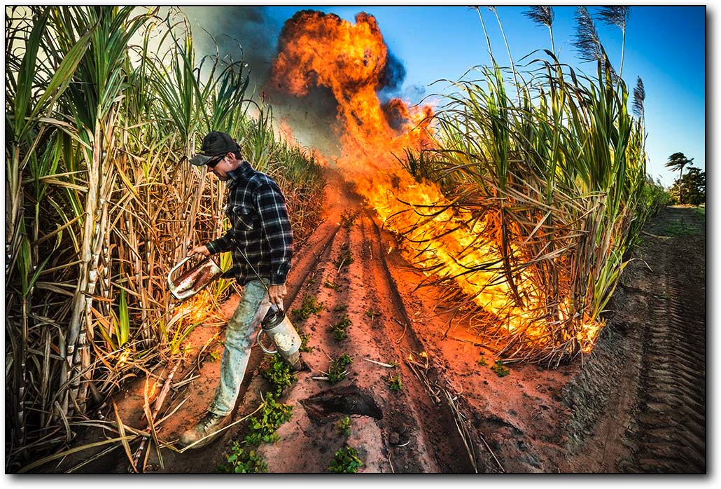 Bundaberg Photographer Paul Beute image of Cane Fire